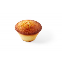 Plain financier